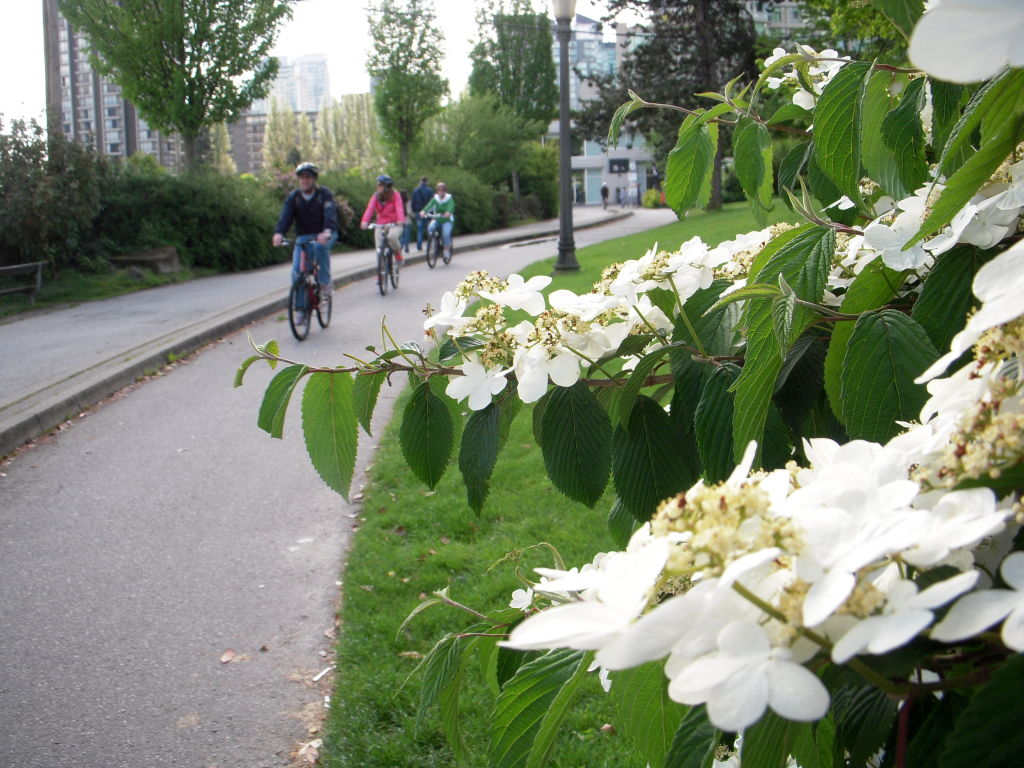 Velocità di incontri recensioni Vancouver