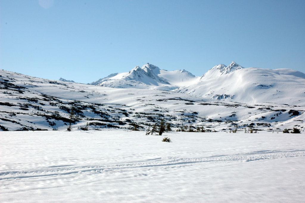 Viaggio in Alaska (parte 3): Skagway, il White Pass e lo Yukon