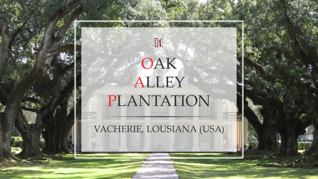 "Oak Alley Plantation. Come essere in ""Via col Vento""!"