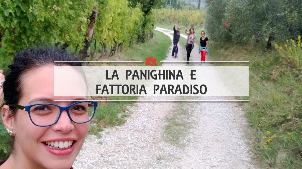 La Panighina e Fattoria Paradiso